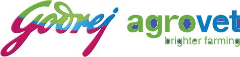 GAVL Logo