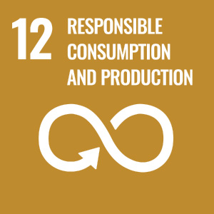 Responsible Consumption and Productions